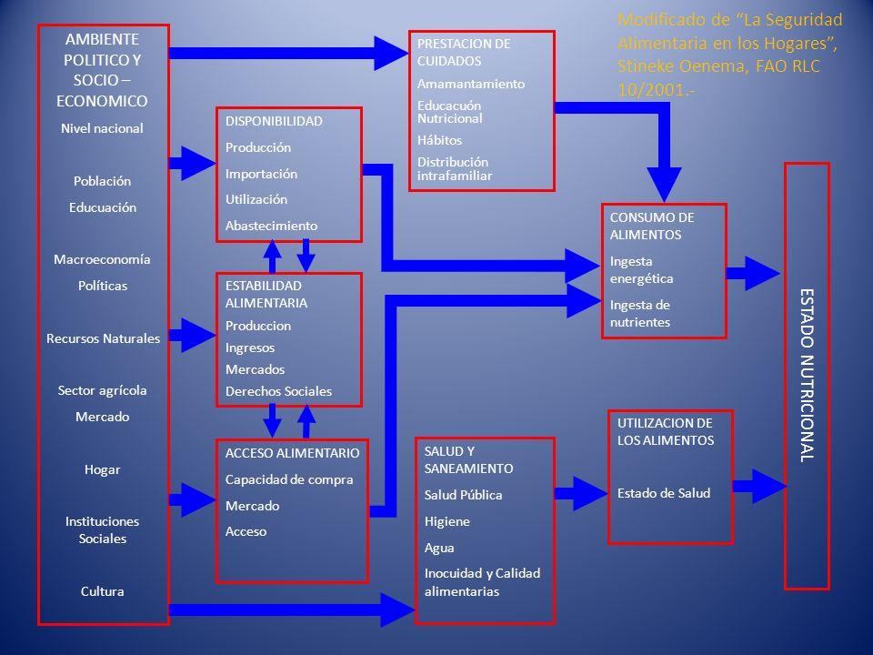Modificado de La Seguridad Alimentaria en los Hogares , Stineke Oenema, FAO RLC 10/2001.-