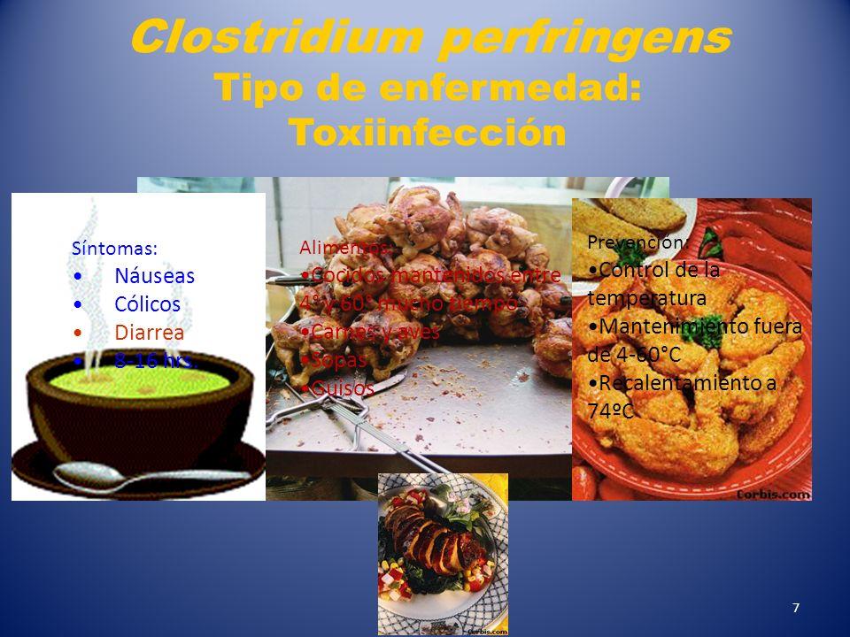 Clostridium perfringens Tipo de enfermedad: Toxiinfección