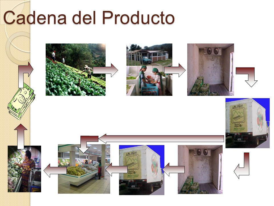 Cadena del Producto