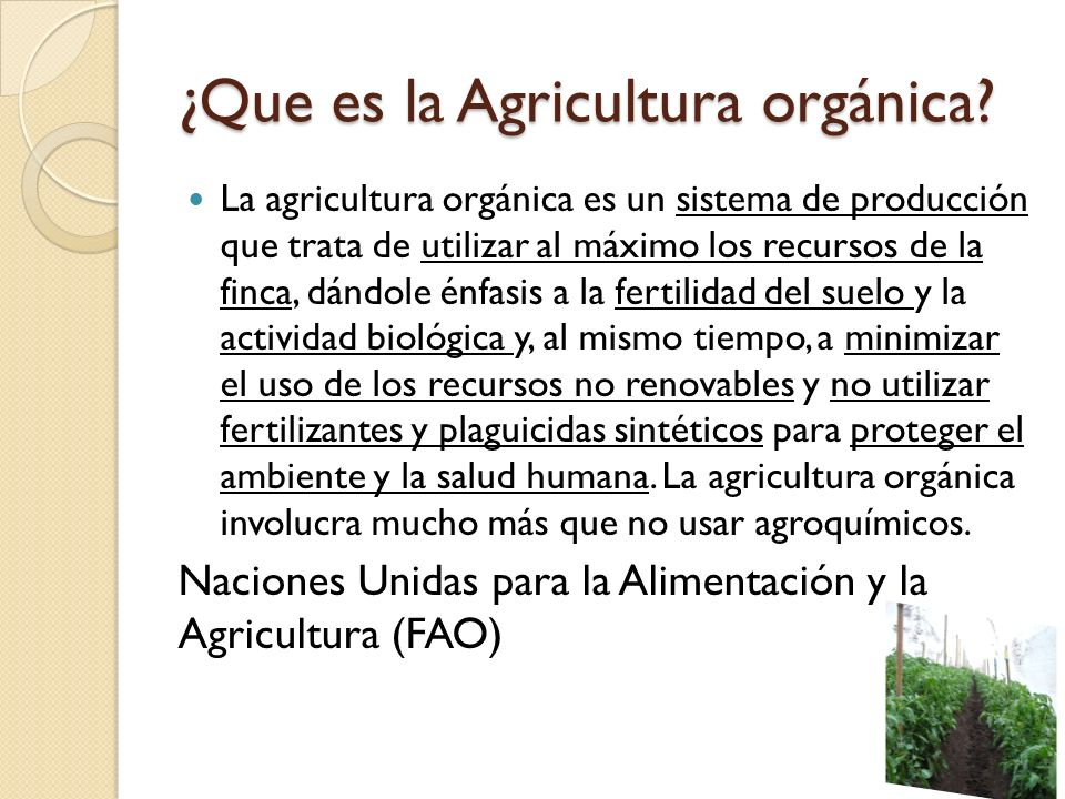 ¿Que es la Agricultura orgánica
