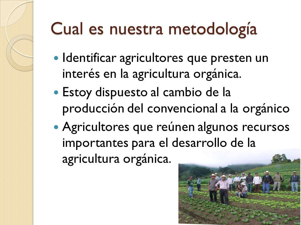 Cual es nuestra metodología