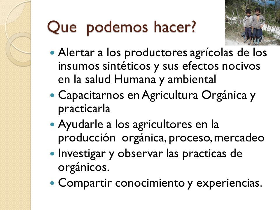 Que podemos hacer Alertar a los productores agrícolas de los insumos sintéticos y sus efectos nocivos en la salud Humana y ambiental.