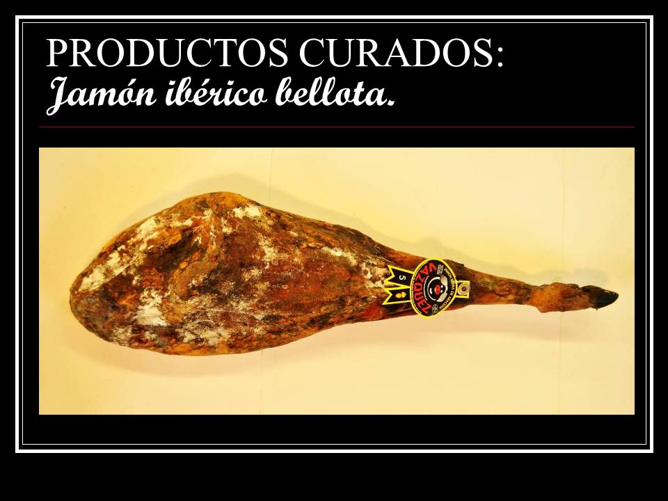 PRODUCTOS CURADOS: Jamón ibérico bellota.