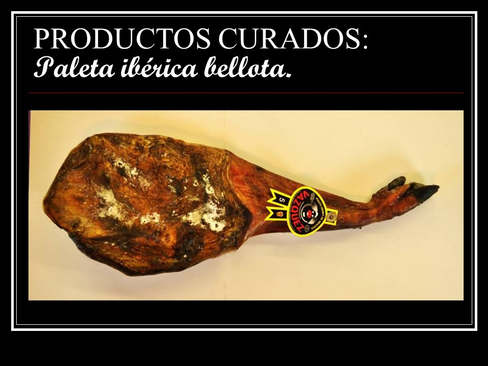 PRODUCTOS CURADOS: Paleta ibérica bellota.