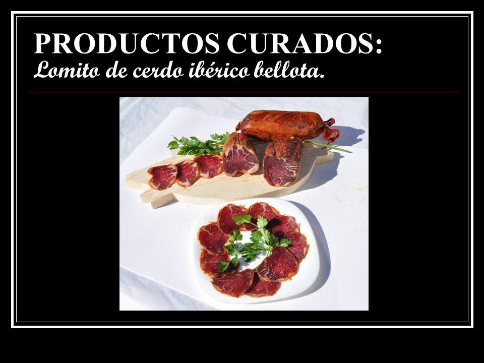 PRODUCTOS CURADOS: Lomito de cerdo ibérico bellota.