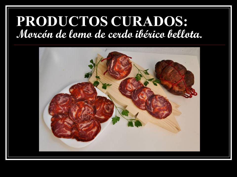 PRODUCTOS CURADOS: Morcón de lomo de cerdo ibérico bellota.
