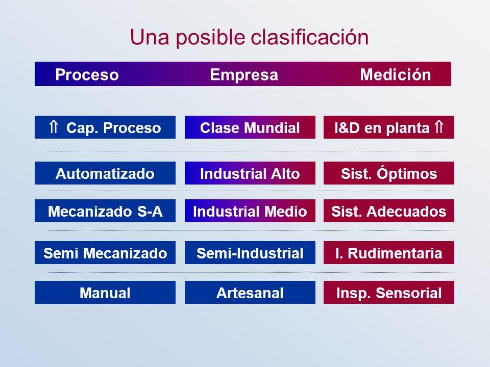 Proceso Empresa Medición