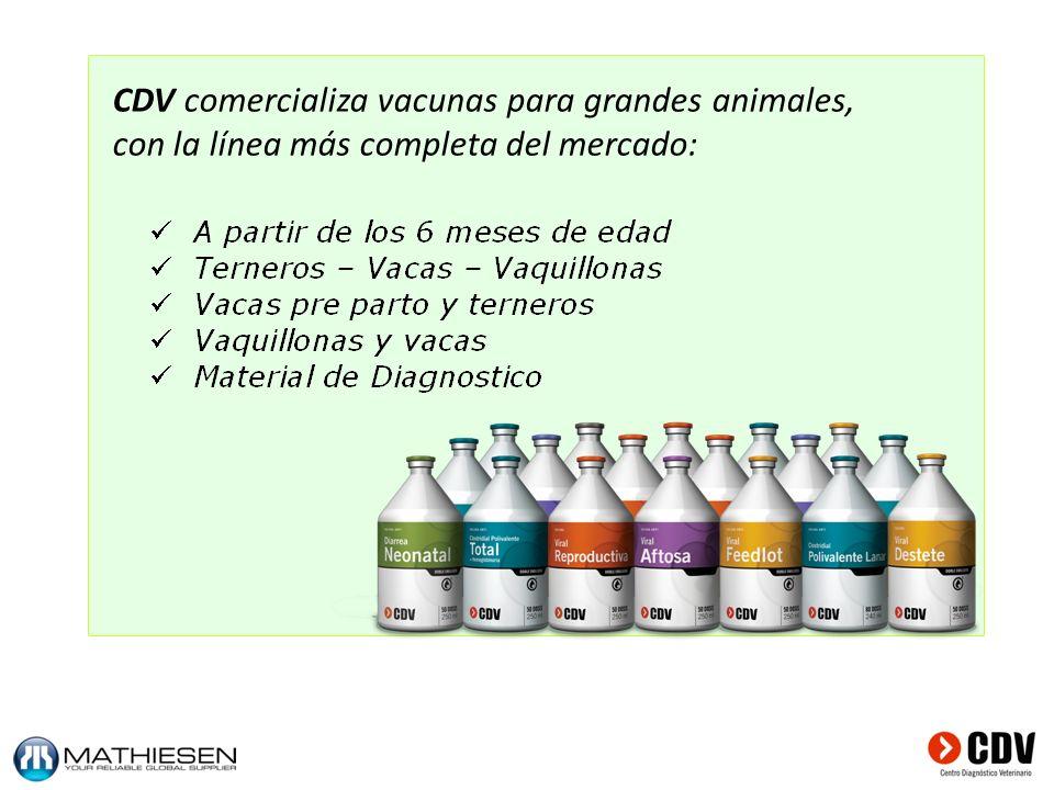 CDV comercializa vacunas para grandes animales,