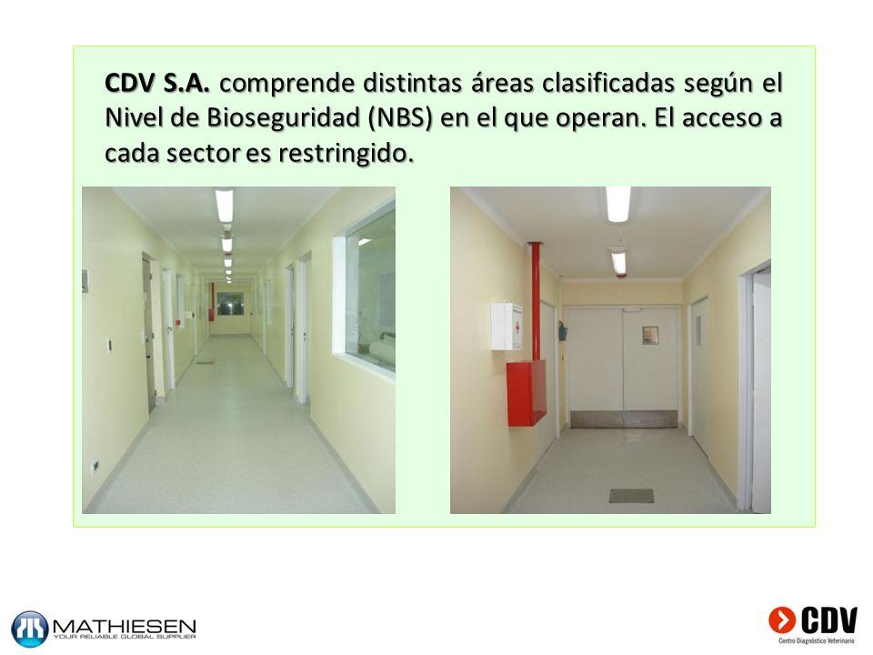 CDV S.A.