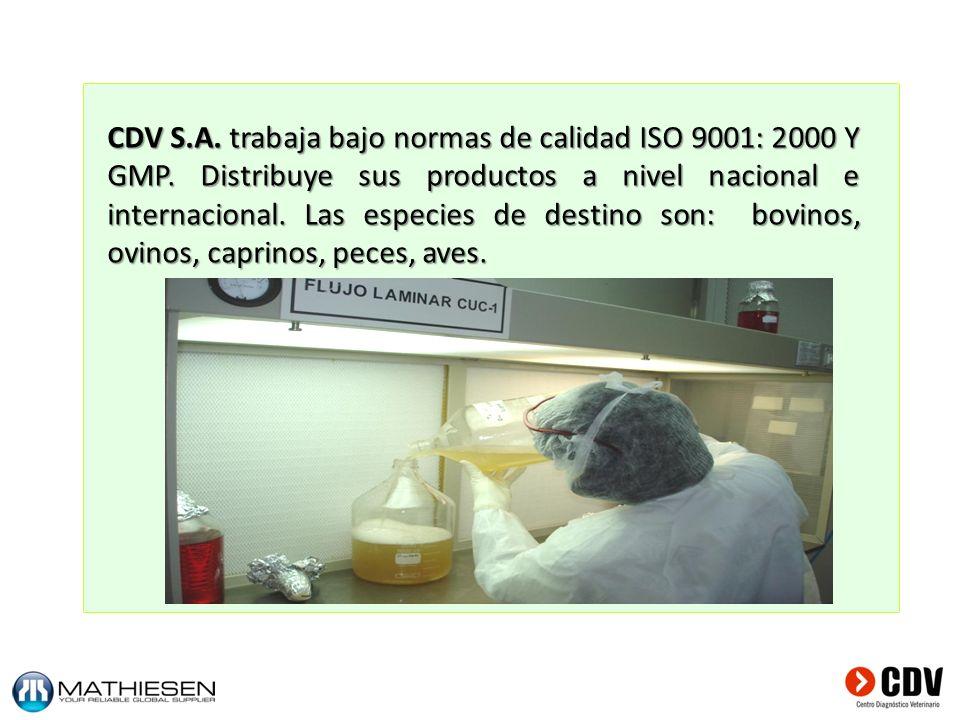 CDV S. A. trabaja bajo normas de calidad ISO 9001: 2000 Y GMP