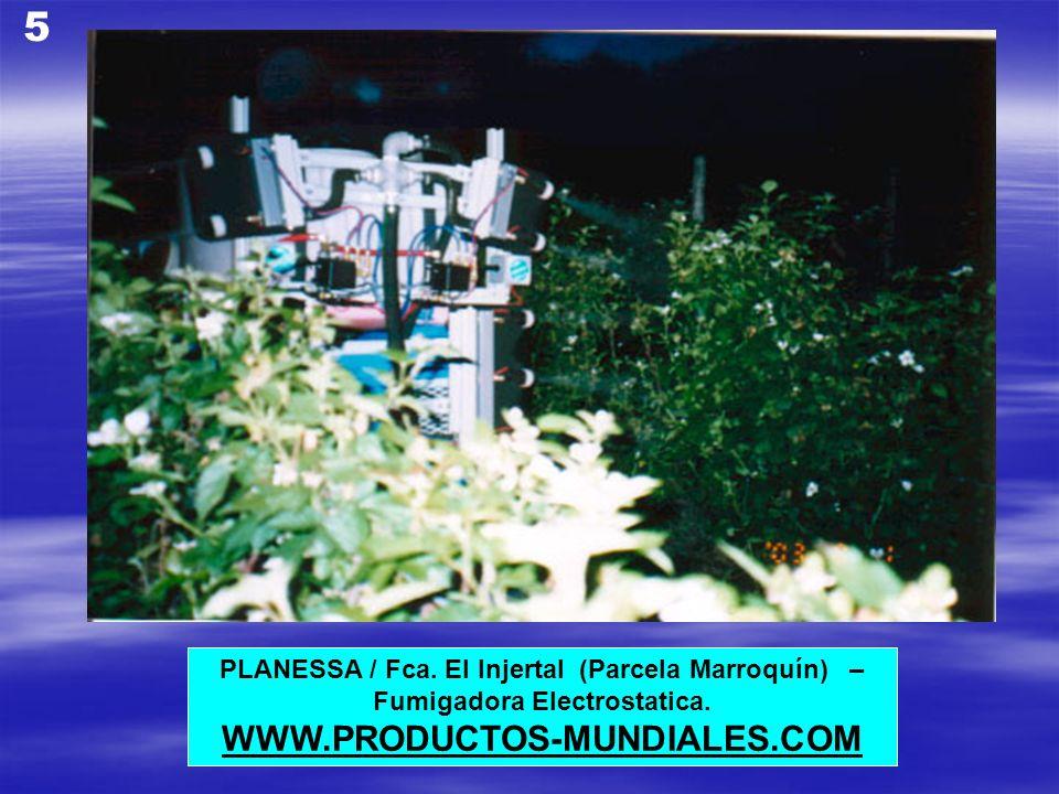 5 WWW.PRODUCTOS-MUNDIALES.COM