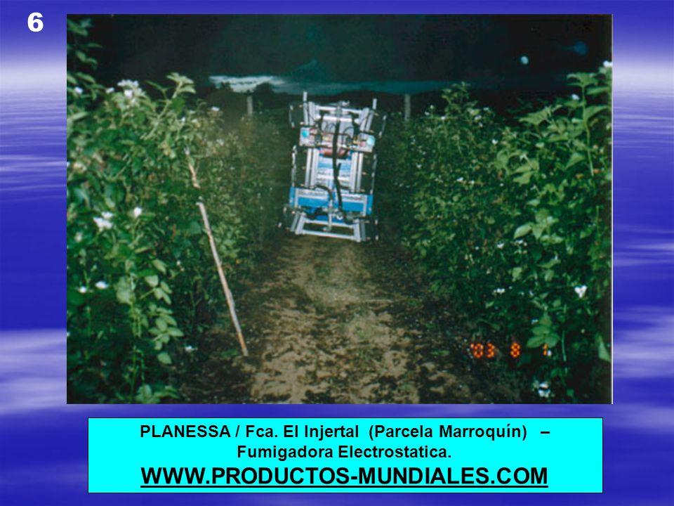 6 WWW.PRODUCTOS-MUNDIALES.COM