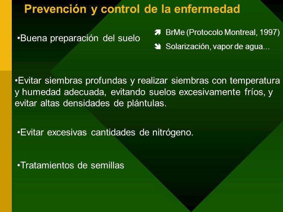 Prevención y control de la enfermedad