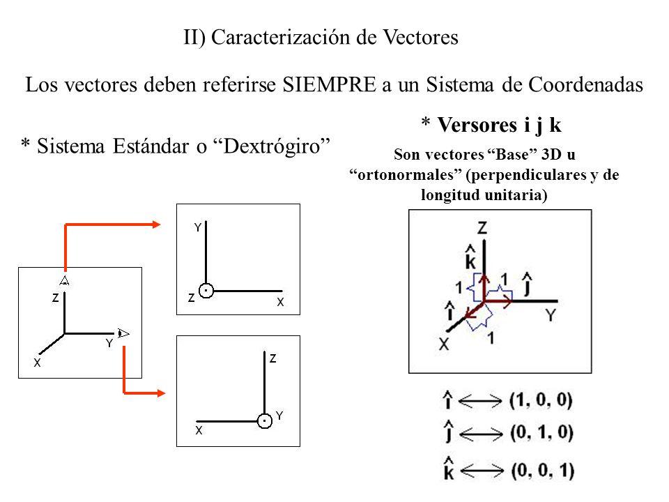 II) Caracterización de Vectores