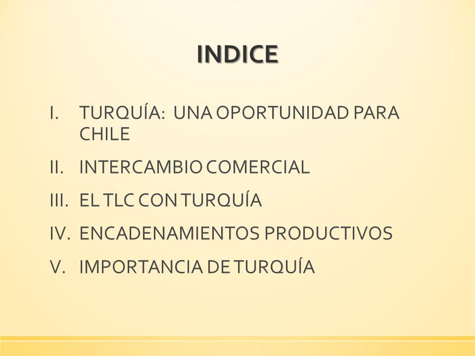INDICE TURQUÍA: UNA OPORTUNIDAD PARA CHILE INTERCAMBIO COMERCIAL