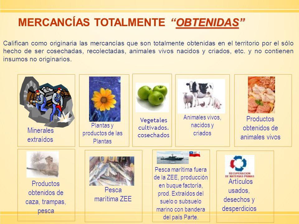 MERCANCÍAS TOTALMENTE OBTENIDAS
