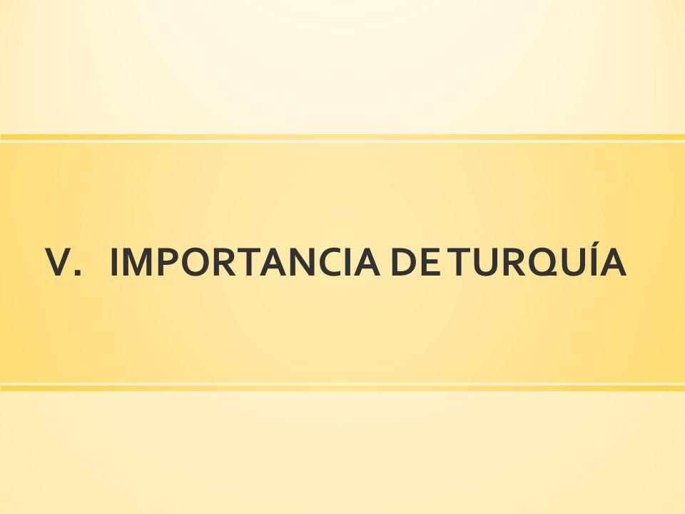 IMPORTANCIA DE TURQUÍA
