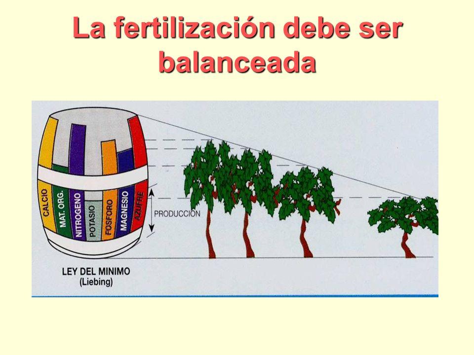 La fertilización debe ser balanceada