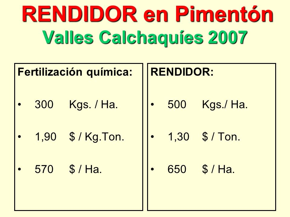 RENDIDOR en Pimentón Valles Calchaquíes 2007