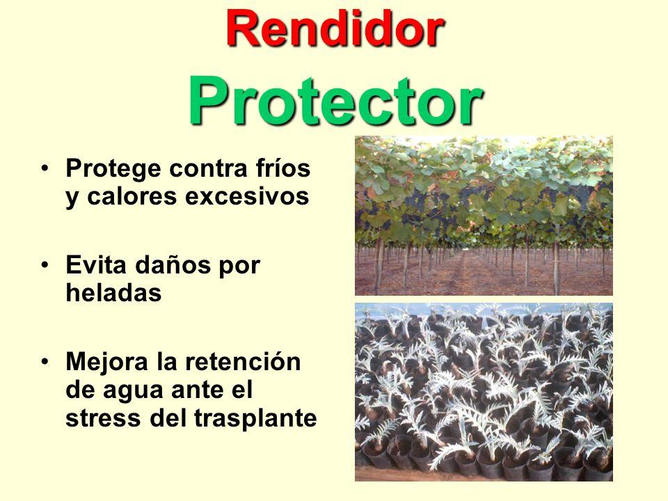 Rendidor Protector Protege contra fríos y calores excesivos