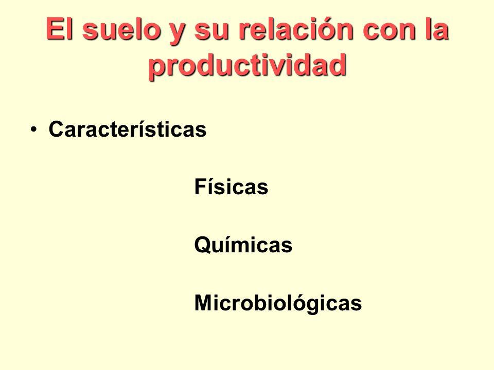 El suelo y su relación con la productividad