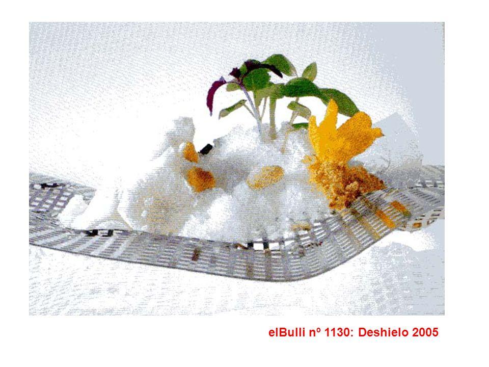 elBulli nº 1130: Deshielo 2005