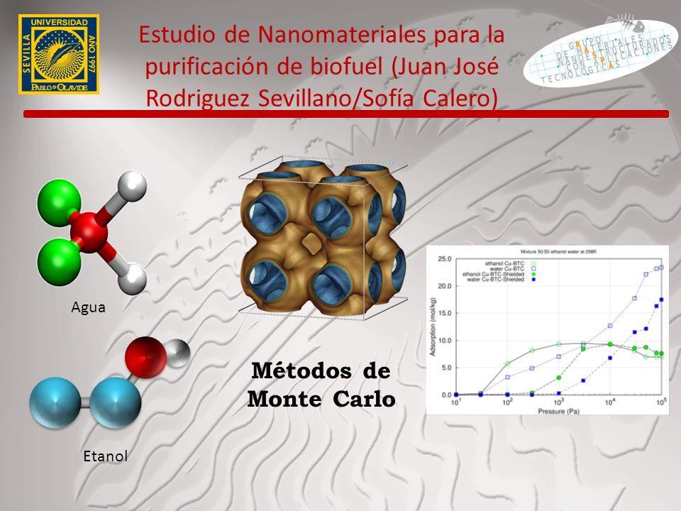 Estudio de Nanomateriales para la purificación de biofuel (Juan José Rodriguez Sevillano/Sofía Calero)