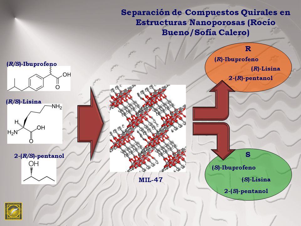 Separación de Compuestos Quirales en Estructuras Nanoporosas (Rocío Bueno/Sofía Calero)