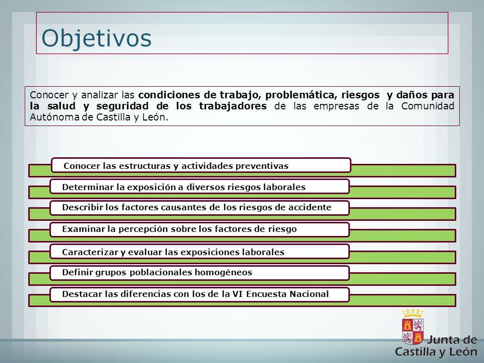 Conocer y analizar las condiciones de trabajo, problemática, riesgos y daños para la salud y seguridad de los trabajadores de las empresas de la Comunidad Autónoma de Castilla y León.
