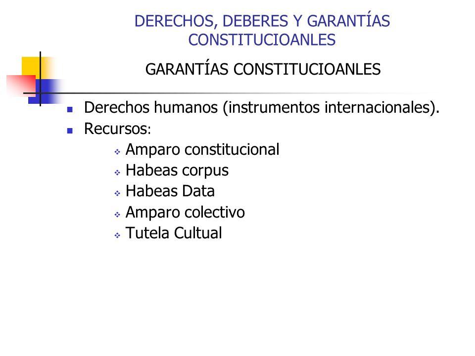 DERECHOS, DEBERES Y GARANTÍAS CONSTITUCIOANLES