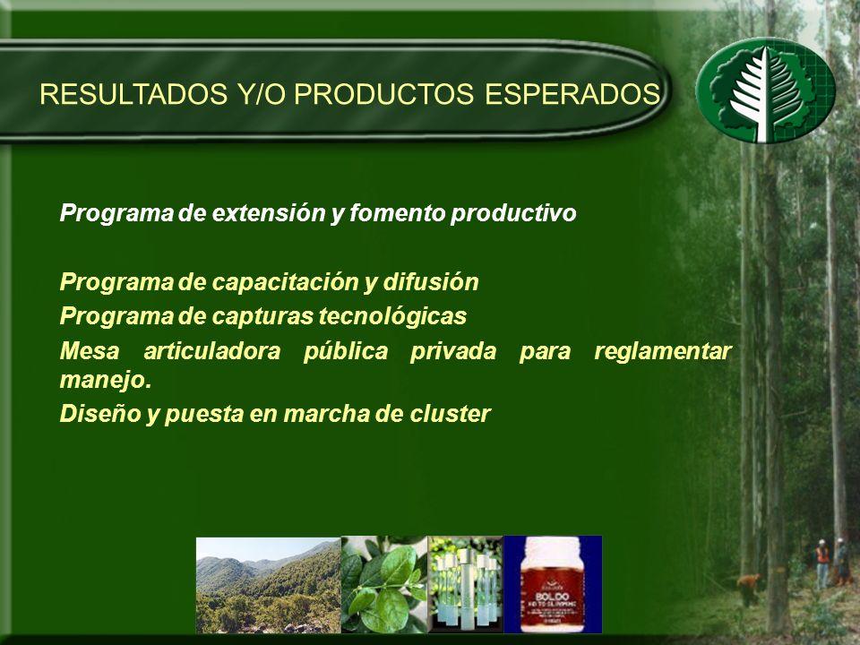RESULTADOS Y/O PRODUCTOS ESPERADOS