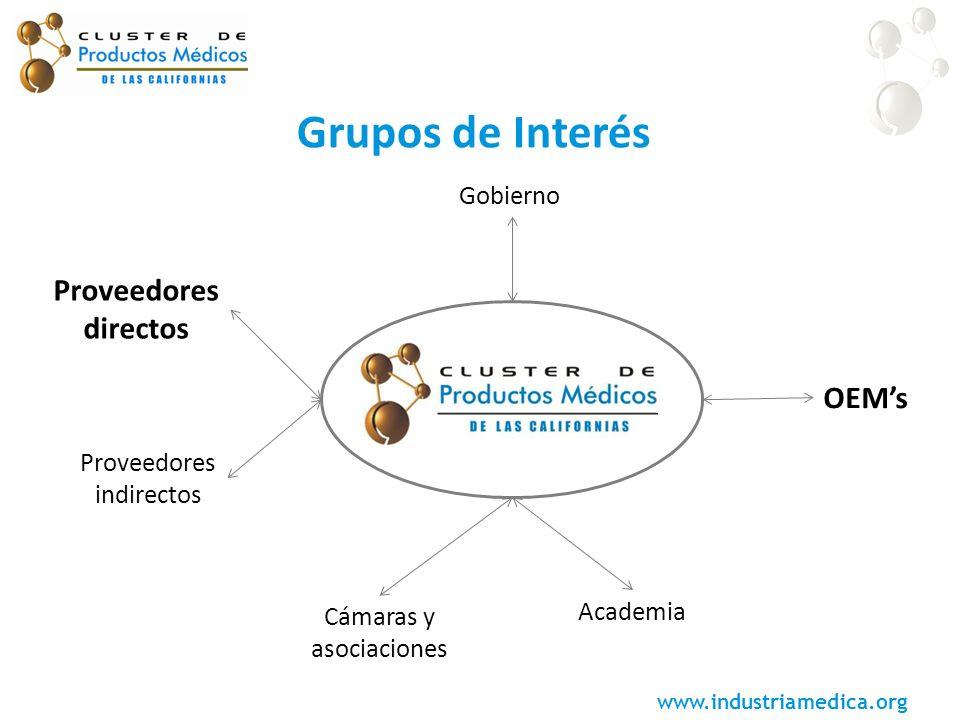 Grupos de Interés Proveedores directos OEM's Gobierno indirectos