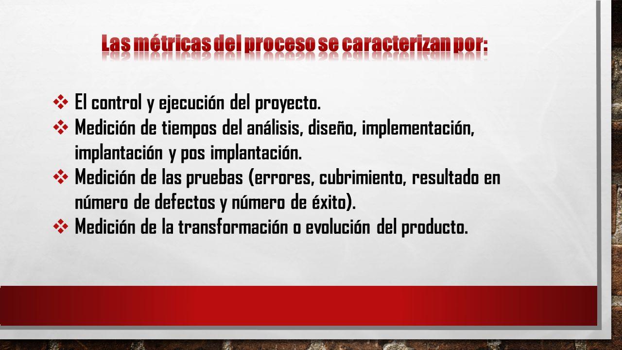 Las métricas del proceso se caracterizan por: