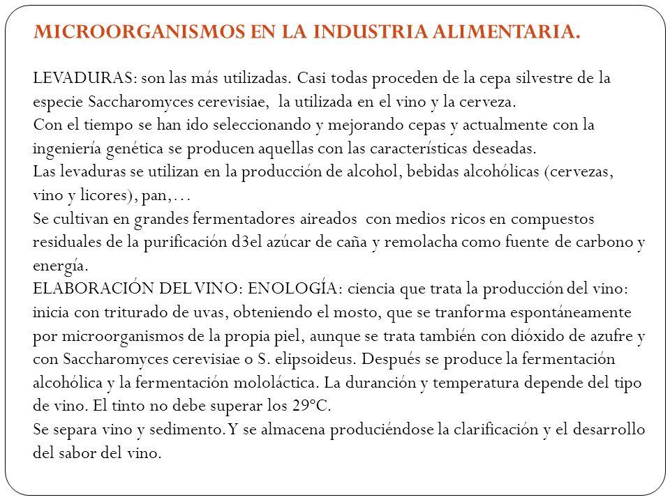 MICROORGANISMOS EN LA INDUSTRIA ALIMENTARIA.