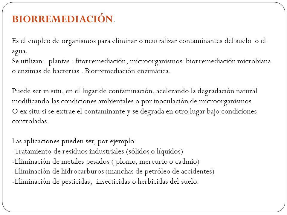 BIORREMEDIACIÓN. Es el empleo de organismos para eliminar o neutralizar contaminantes del suelo o el agua.