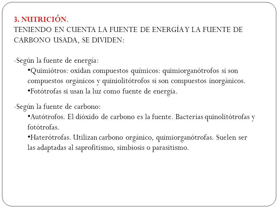 3. NUTRICIÓN. TENIENDO EN CUENTA LA FUENTE DE ENERGÍA Y LA FUENTE DE CARBONO USADA, SE DIVIDEN: Según la fuente de energía: