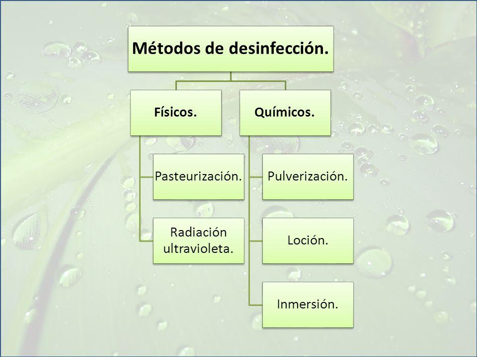 Métodos de desinfección.