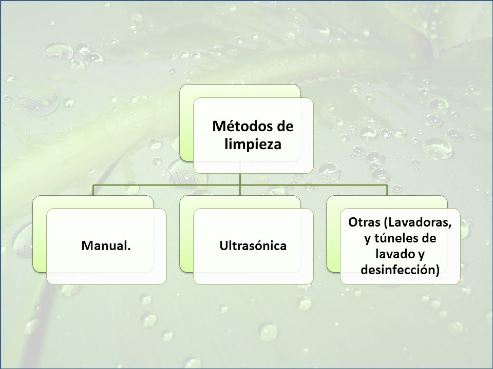 Otras (Lavadoras, y túneles de lavado y desinfección)