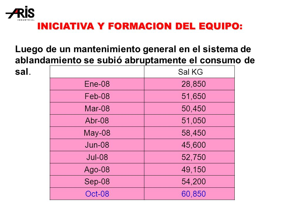 INICIATIVA Y FORMACION DEL EQUIPO: