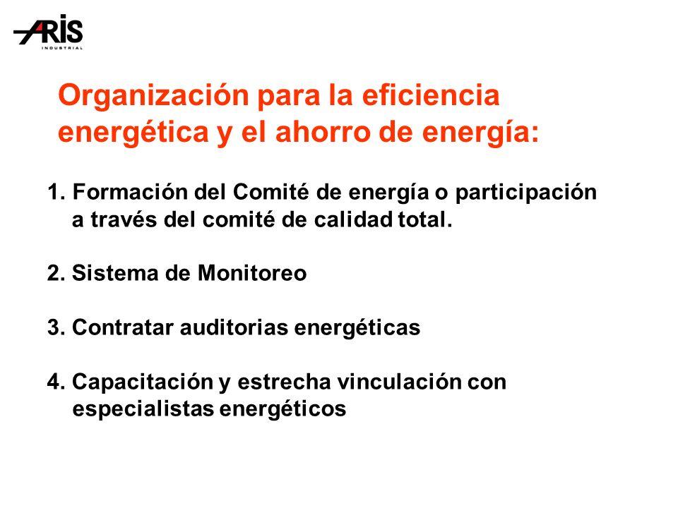 Organización para la eficiencia energética y el ahorro de energía: