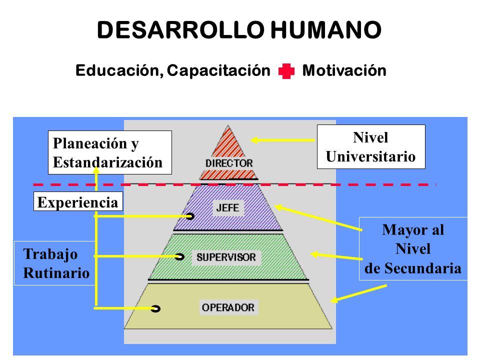 DESARROLLO HUMANO Educación, Capacitación Motivación Nivel