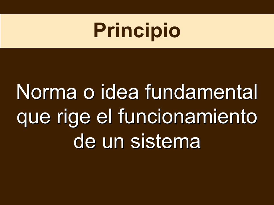 Norma o idea fundamental que rige el funcionamiento de un sistema