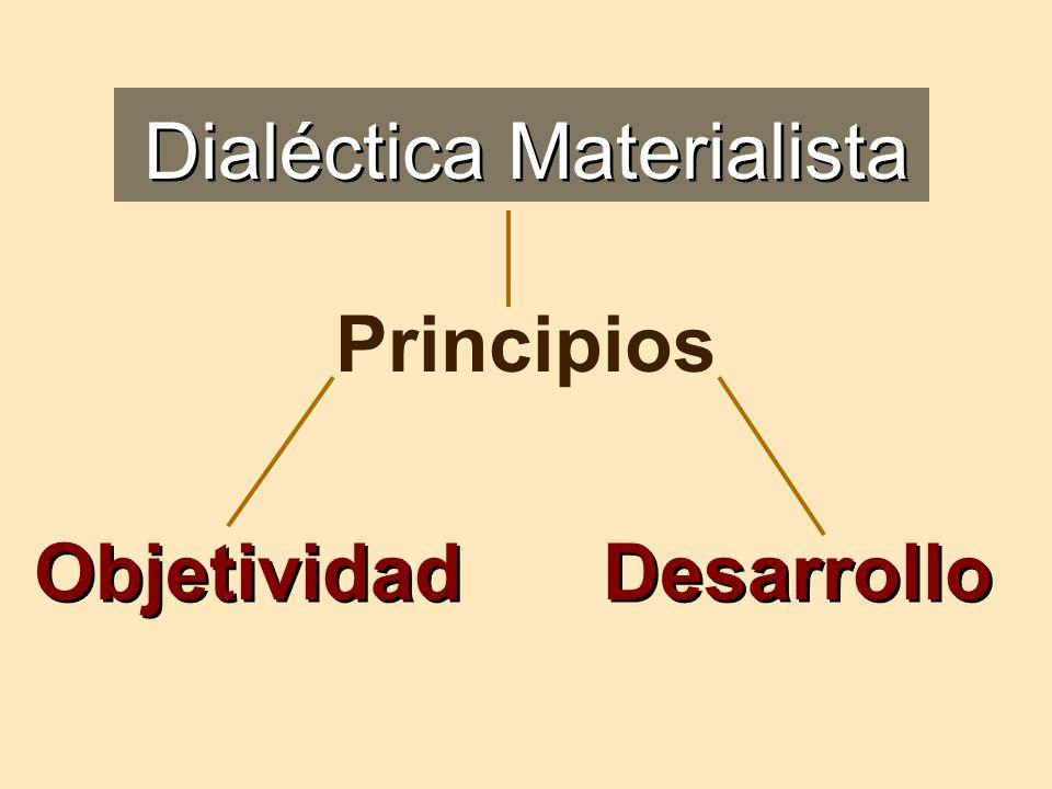 Dialéctica Materialista
