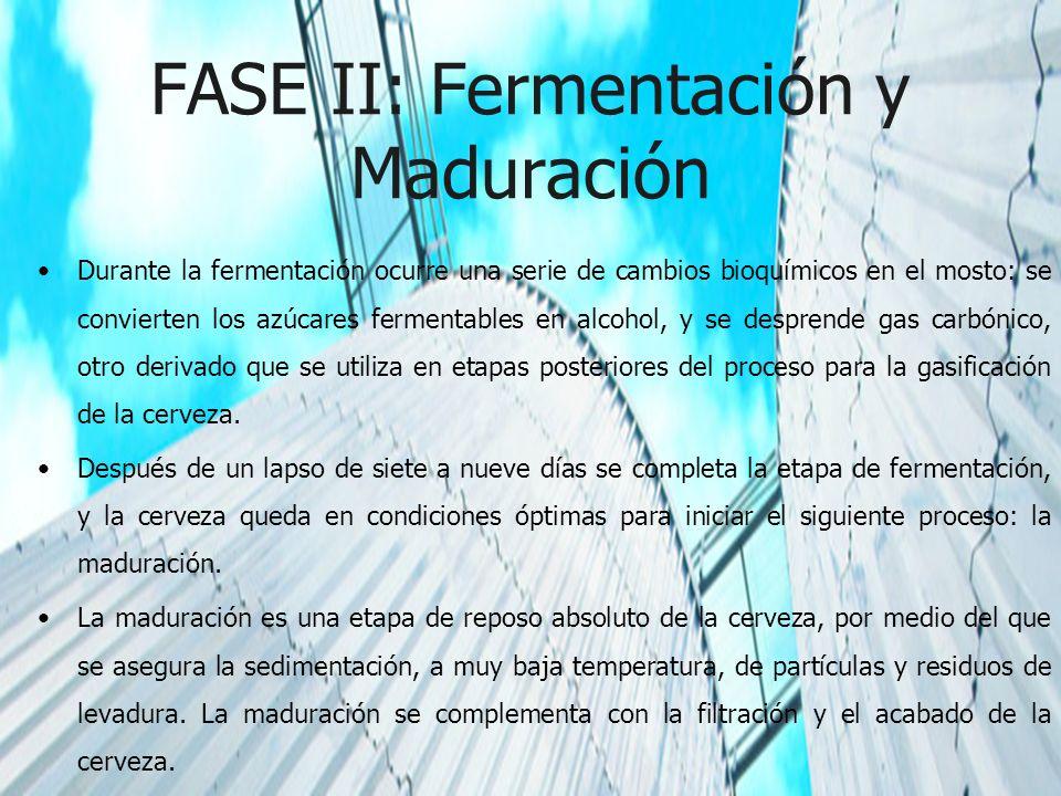 FASE II: Fermentación y Maduración