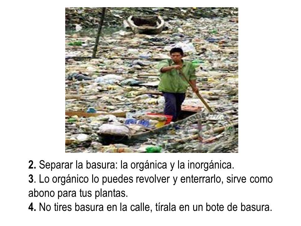 2. Separar la basura: la orgánica y la inorgánica.