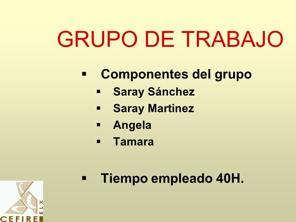 GRUPO DE TRABAJO Componentes del grupo Tiempo empleado 40H.