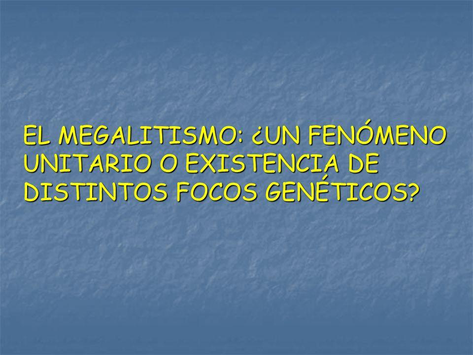 EL MEGALITISMO: ¿UN FENÓMENO UNITARIO O EXISTENCIA DE DISTINTOS FOCOS GENÉTICOS