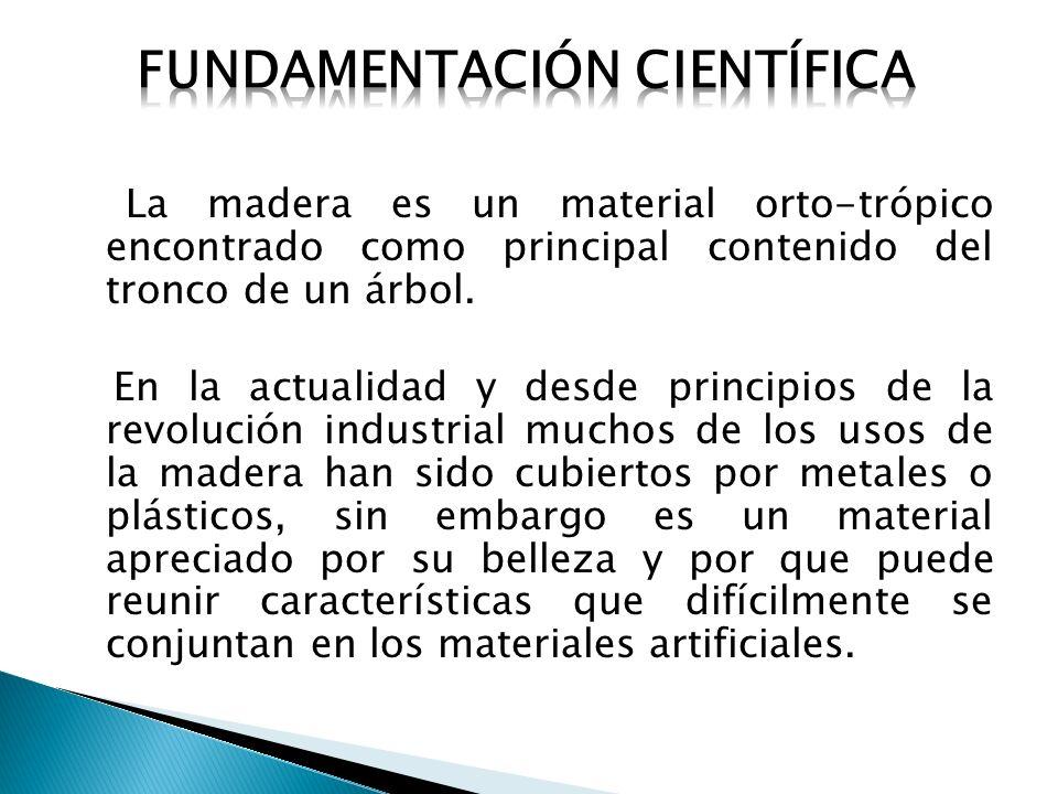 Fundamentación científica