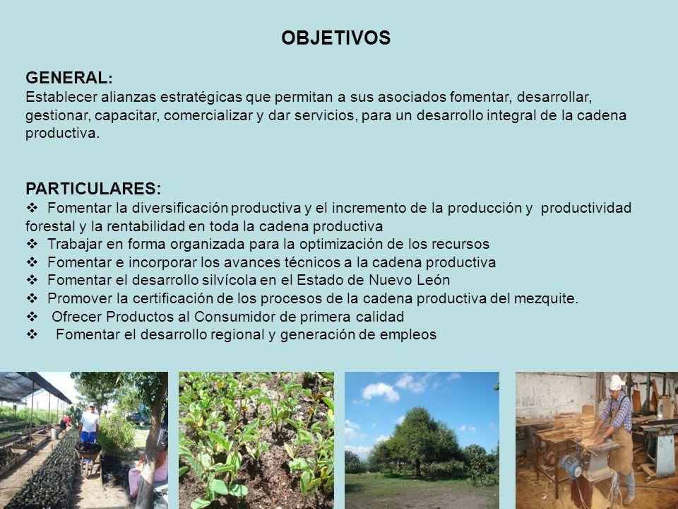 OBJETIVOS GENERAL: PARTICULARES: