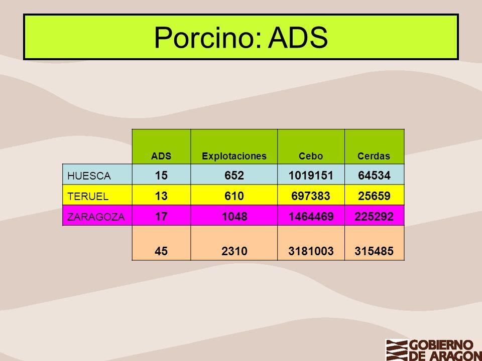 Porcino: ADS ADS. Explotaciones. Cebo. Cerdas. HUESCA. 15. 652. 1019151. 64534. TERUEL. 13.